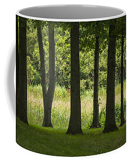 Trunks In A Row Coffee Mug