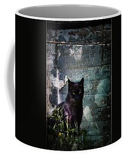Truth Or Stare... Coffee Mug