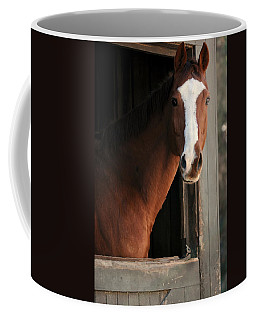 Coffee Mug featuring the photograph T's Window by Angela Rath