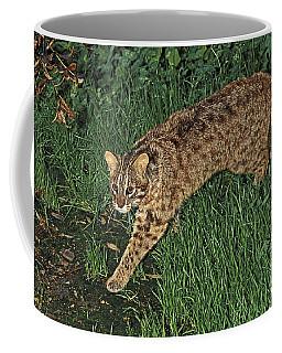 Tsushima Leopard Cat Coffee Mug