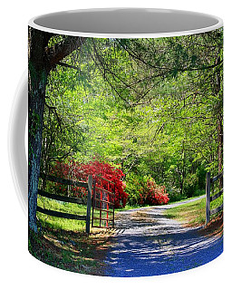 Coffee Mug featuring the photograph Tucked Away by Kathryn Meyer