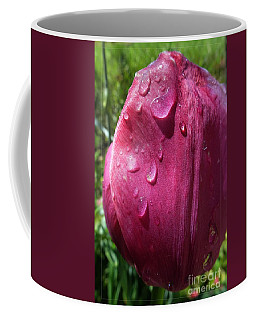 Coffee Mug featuring the photograph Tulip After The Rain by Jean Bernard Roussilhe