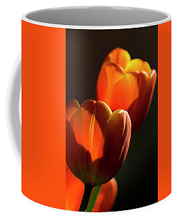 Coffee Mug featuring the photograph Tulip Afternoon by Michael Hope