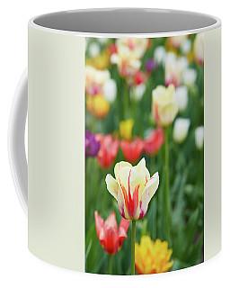 Tulip Bed Coffee Mug
