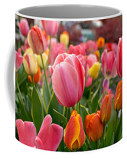 Tulip Bed Coffee Mug