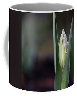 Tulip Bud Coffee Mug