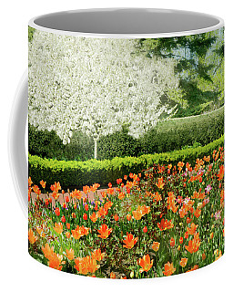 Coffee Mug featuring the photograph Tulip Cafe by Diana Angstadt