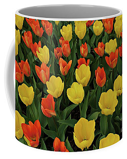Coffee Mug featuring the photograph Tulip Chorus by Patricia Strand