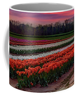 Coffee Mug featuring the photograph Tulip Farm by Susan Candelario