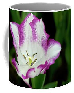 Tulip Flower Coffee Mug