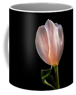 Tulip In Light Coffee Mug