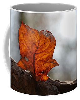 Coffee Mug featuring the photograph Tulip Leaf  by Jane Ford