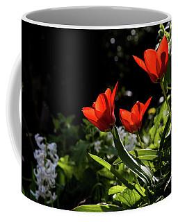 Tulip Coffee Mug by Mariusz Zawadzki