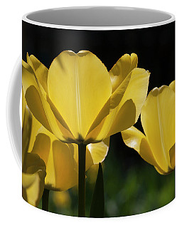 Tulip Soiree Coffee Mug by Michael Friedman