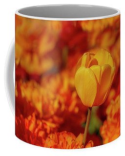 Coffee Mug featuring the photograph Tulip Standout by Susan Candelario
