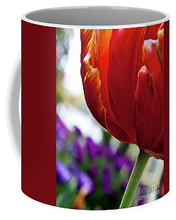 Coffee Mug featuring the photograph Tulip View by Ana V Ramirez