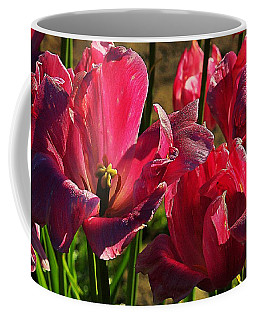 Tulips 5 Coffee Mug