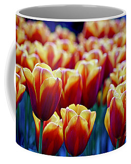 Tulips At Sunset Coffee Mug by Michael Cinnamond