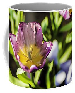Tulips At The End Coffee Mug