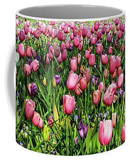 Tulips In Bloom Coffee Mug