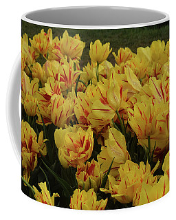 Tulips In The Garden Tulips In The Park  Coffee Mug