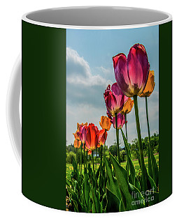 Tulips In The Spring Coffee Mug by Jane Axman