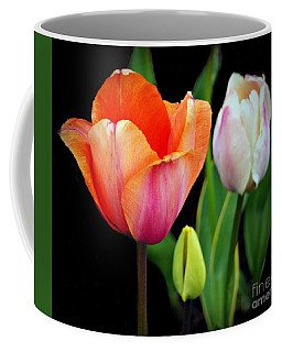 Coffee Mug featuring the photograph Tulips On Black by Patricia Strand