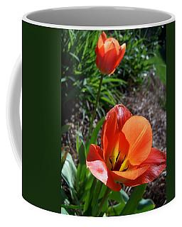 Coffee Mug featuring the photograph Tulips Wearing Orange by Sandi OReilly