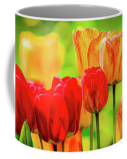 Tulips5 Coffee Mug