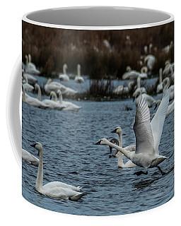 Tundra Swan And Liftoff Head Start Coffee Mug