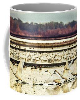 Tundra Swans Lift Off Coffee Mug