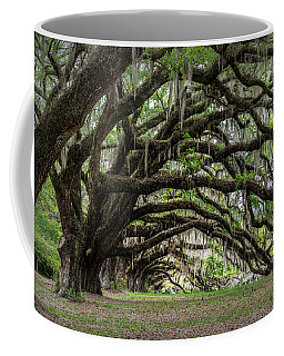 Coffee Mug featuring the photograph Tunnel In Charleston by Jon Glaser