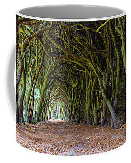 Coffee Mug featuring the photograph Tunnel Of Intertwined Yew Trees by Semmick Photo