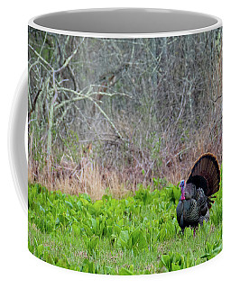 Coffee Mug featuring the photograph Turkey And Cabbage by Bill Wakeley