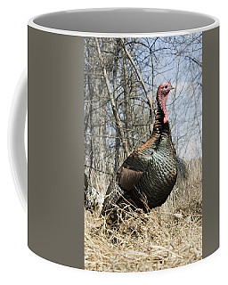 Turkey Tom Coffee Mug