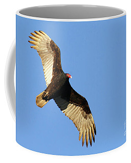 Coffee Mug featuring the photograph Turkey Vulture by Debbie Stahre