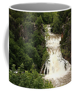 Turner Falls Waterfall Coffee Mug