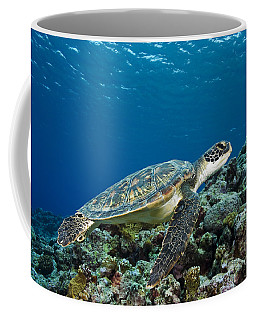 Turtle Above Reef Coffee Mug