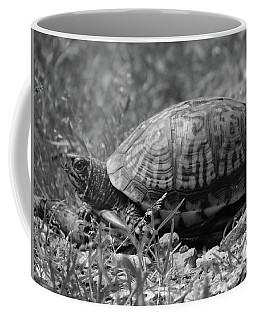 Turtle Crossing Coffee Mug