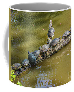 Turtle Log Jam Coffee Mug