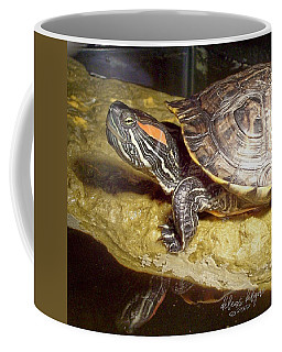 Turtle Reflections Coffee Mug