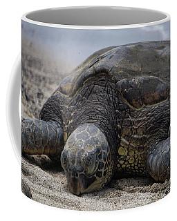 Coffee Mug featuring the photograph Turtle Up Close by Pamela Walton