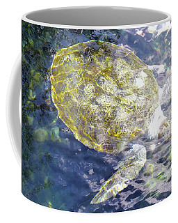 Coffee Mug featuring the photograph Turtle Water Glide by Francesca Mackenney