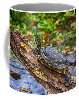 Turtle Yoga Coffee Mug
