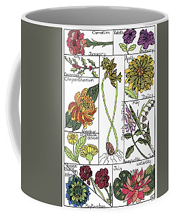 Twelve Month Flower Box Coffee Mug