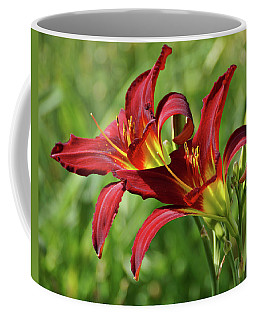 Coffee Mug featuring the photograph Twin Daylilies by Sandy Keeton