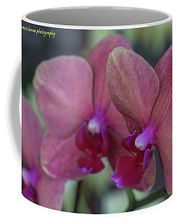 Twin Orchids Coffee Mug by Nance Larson