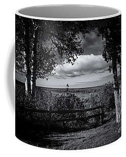 Coffee Mug featuring the photograph Twin Trees by Rachel Cohen