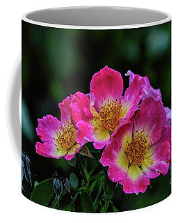 Twins In Pink And White Coffee Mug