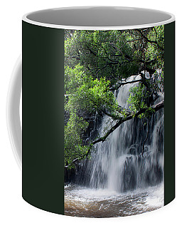 Twins Waterfalls Coffee Mug